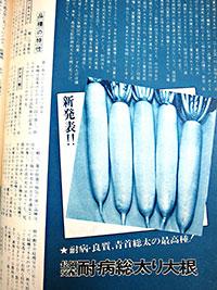 40年前の「耐病総太り」発売当時の同社発行の雑誌『園芸新知識』