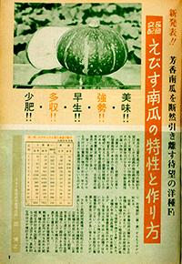 「えびす」新発表の記事(1964年のタキイ種苗発行『園芸新知識』より)
