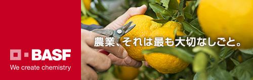 BASFジャパン株式会社