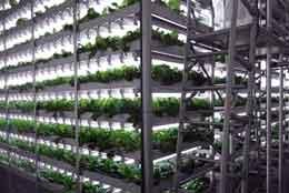 完全閉鎖型の人工光型植物工場(イメージ図)