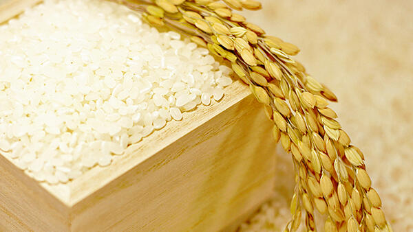 komemarket_1600_900.jpg