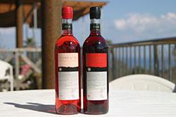 〔166〕都農ワイン