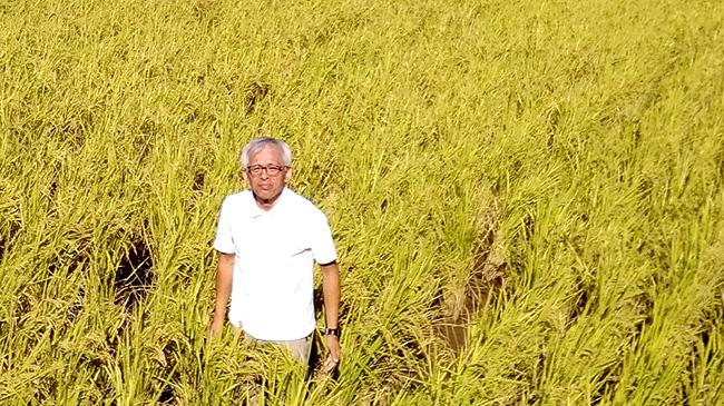熊本県御船で自然栽培農法でお米を育てている米光義幸さん
