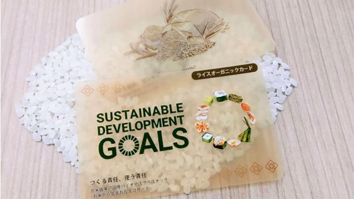 地球に優しいプラスチック お米から生まれた「お米カード」新発売