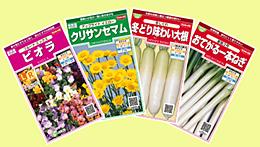 絵袋「実咲」シリーズに新商品