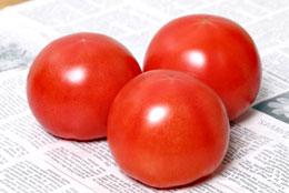 黄化葉巻病耐病性大玉トマト「麗旬」