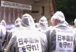 雨の中、集会には3000人が集まった