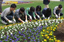 花壇の植え込みに参加したJAグループ職員ら