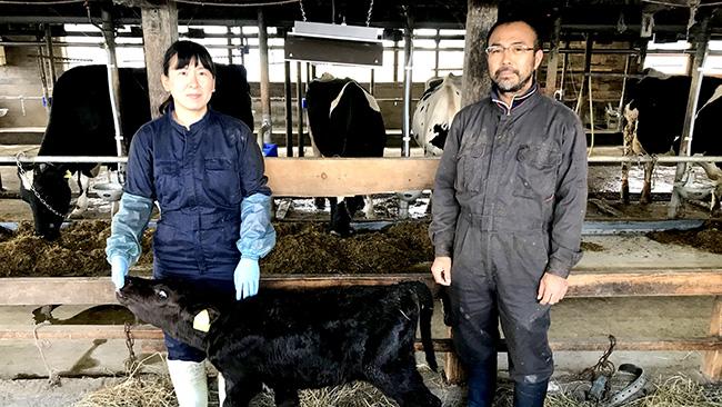 就農者研修を経て、今年から生乳の生産を始めた関東出身の新規就農者の夫婦