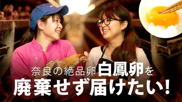 奈良の養鶏姉妹が鳥インフル禍の事業継続&近隣養鶏場寄付へ支援募集