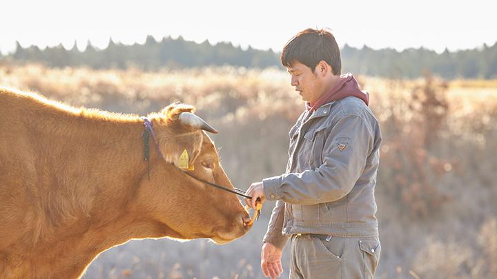 阿蘇の資源循環を未来につなぐ「黒川温泉 あか牛ファンド」設立