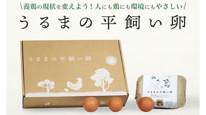 うるまの平飼い卵
