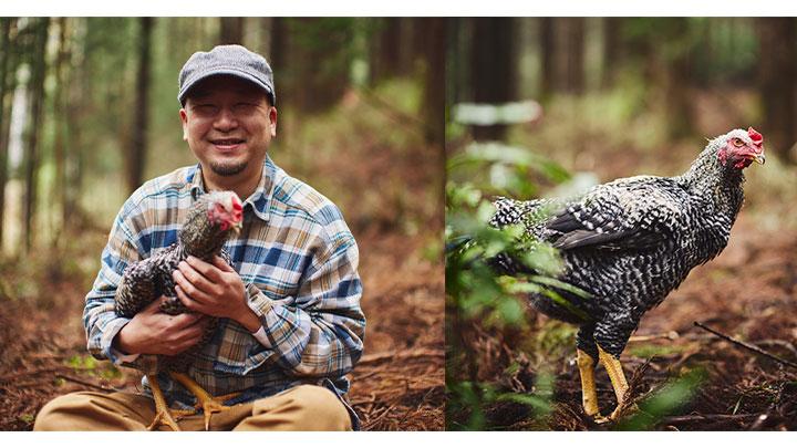 かながわ鶏の「丹沢滋黒軍鶏」