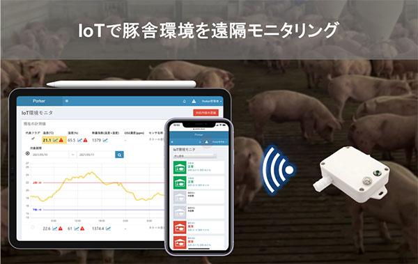 健康に豚が育つ快適環境に導くアルゴリズムの実証開始 Eco-Pork