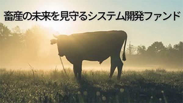 事業投資型CF「畜産の未来を見守るシステム開発ファンド」募集開始
