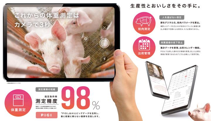 養豚農家向けに豚の成長管理をサポート