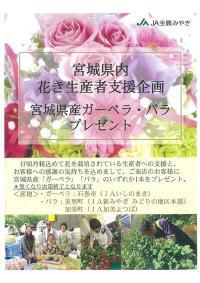 宮城県内花き生産者支援企画