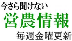 imasara-midashi.jpg