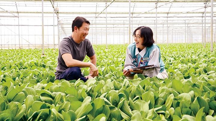 農家の相談に乗る営農アドバイザー