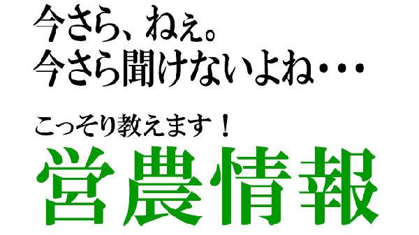 imasara1900_600.jpg