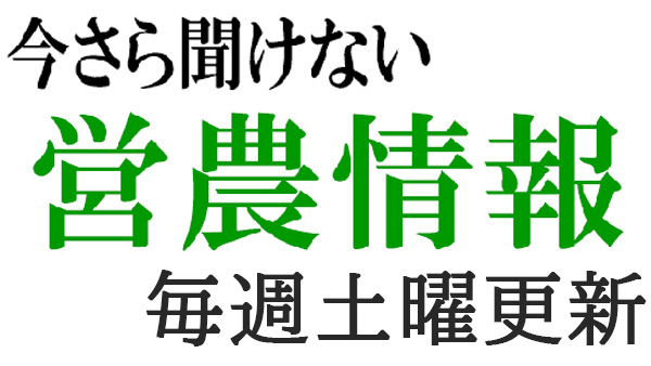 imasara_doyou.jpg