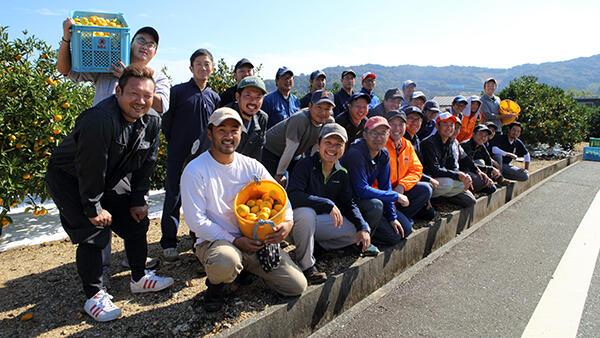 ミカン栽培の課題解決へプロジェクト始動-三ヶ日町柑橘出荷組合青年部