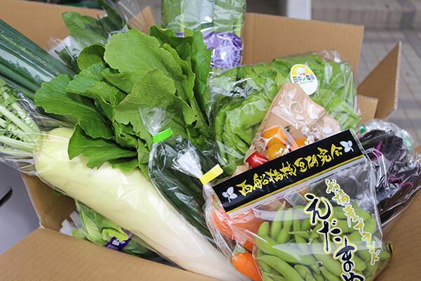 新鮮野菜セット