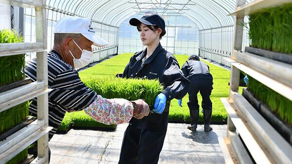 新規採職員14人が農業体験研修-JAいしのまき用