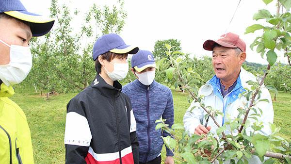 大学生が果樹農家で援農-JAふくしま未来と福島大が連携