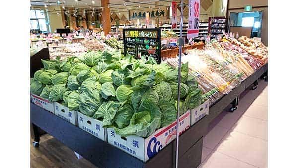 新鮮な野菜が並ぶ青果売り場
