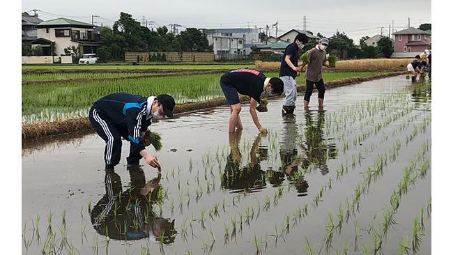 食育プロジェクトで職員と家族らが田植え体験 JA全厚連