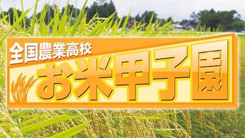 未来の担い手応援!全国農業高校「お米甲子園」に協賛 JA全農