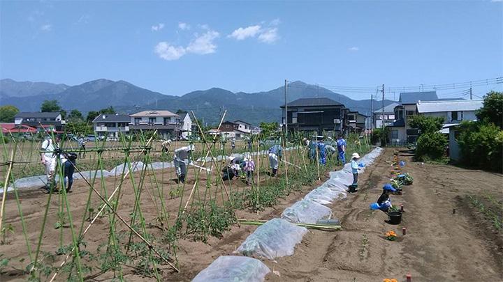 【今年の焦点 都市農業②】地方圏にも生産緑地制度を