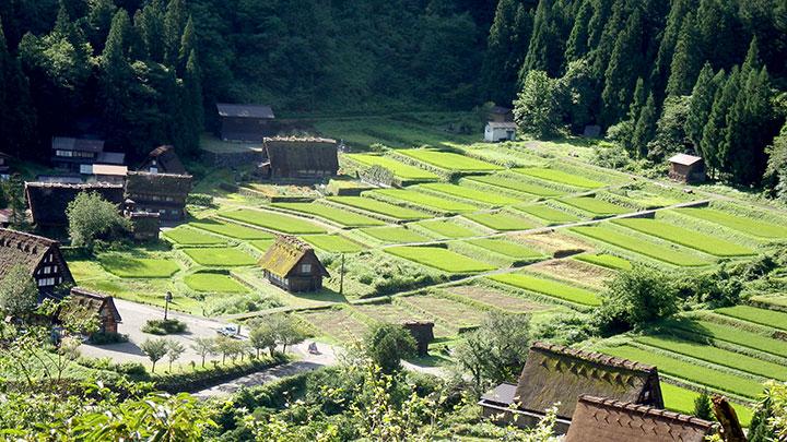 農村の景観は農泊の大きな魅力(岐阜県の白川郷)