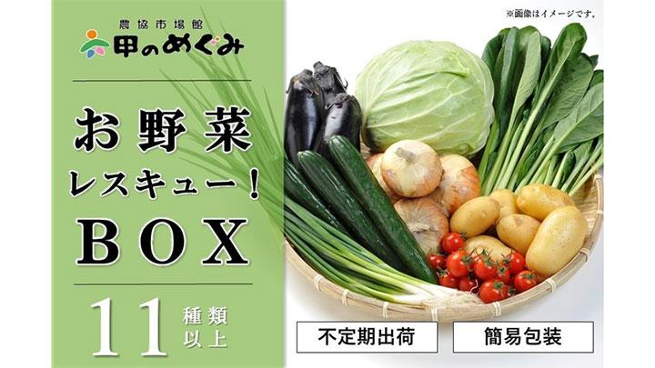 フードロス削減「おつとめ野菜ボックス」販売 JAタウン