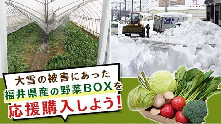福井県産野菜の応援購入プロジェクトを開始 JA全農