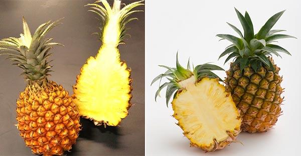 「JAタウン」で 沖縄県産パイナップル販売開始 抽選でプレゼントも