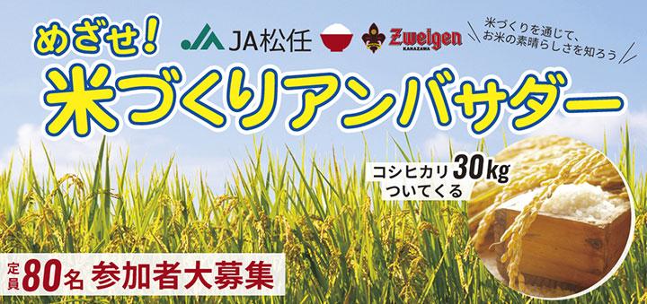 JA松任×ツエーゲン金沢「めざせ!米づくりアンバサダー」参加者募集