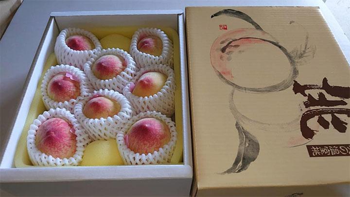 初出荷された岡山県産温室桃「はなよめ」