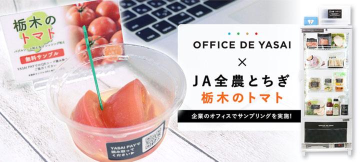 コロナ禍の販促に「オフィスで野菜」トマトをサンプリング JA全農とちぎ