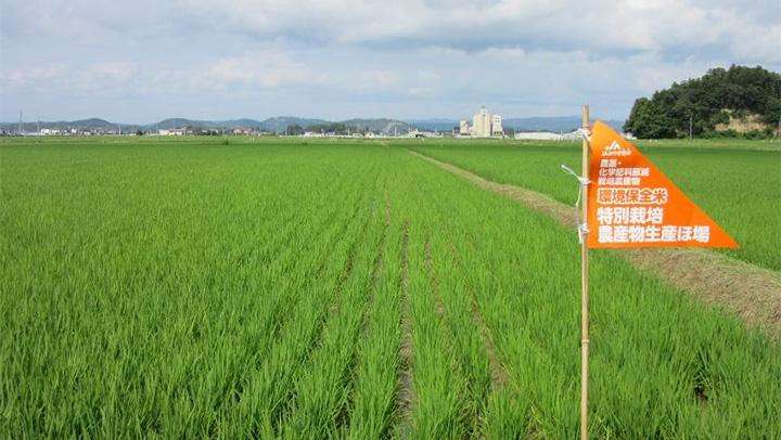 【農業協同組合研究会】宮城県JAみやぎ登米 環境保全米 20年の挑戦