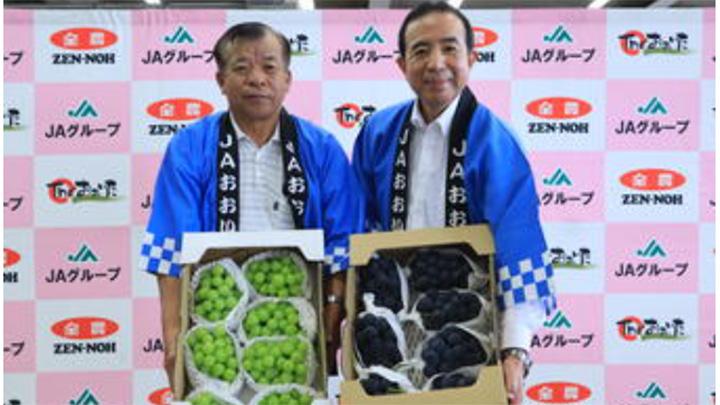 安心院産「シャインマスカット」と「ピオーネ」をPRする同ぶどう部会の小野次会長(左)と是永市長