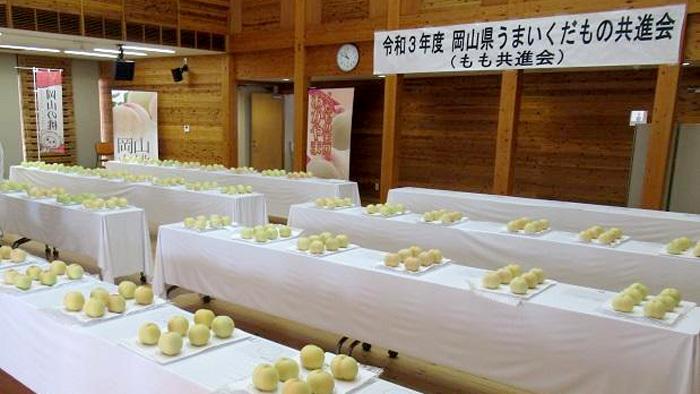 岡山県うまいくだもの共進会の様子