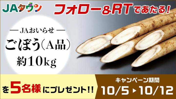 シャキシャキ食感と香りが自慢 青森県産「ごぼう」数量限定で販売 JAタウン