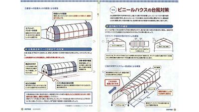 seri20082902_s.jpg