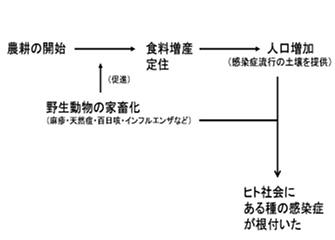 感染症の出現 図表