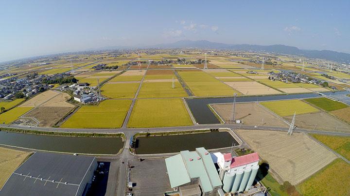 集落営農統合、雇用創出も 農事組合法人・城田西ファーム(佐賀県神埼市)
