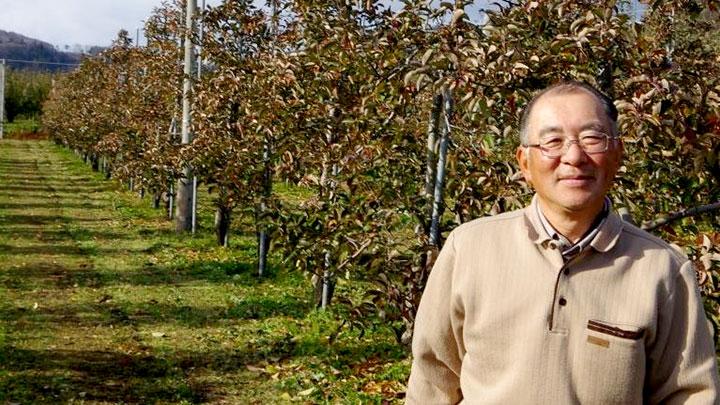 自分のリンゴ園での田澤俊則氏