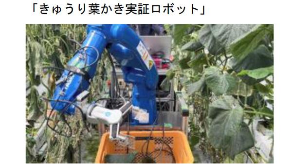 ゆめファーム全農SAGAで実証中の「きゅうり葉かき実証ロボット」