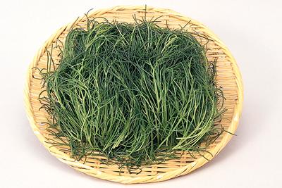 江戸時代からの山形伝統野菜おかひじき